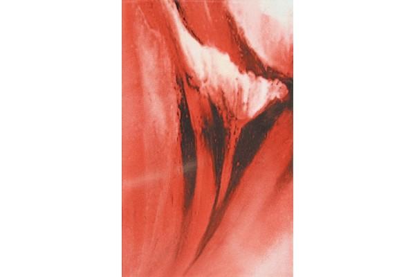 Декор Styl Red 8 25x40