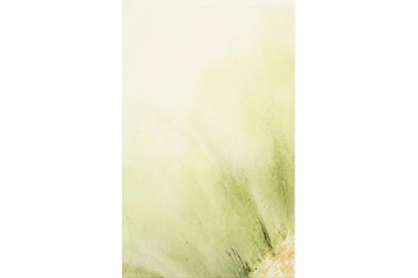 Декор Styl Kiwi 1 25x40