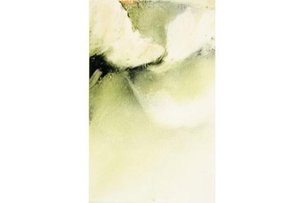 Декор Styl Kiwi 9 25x40