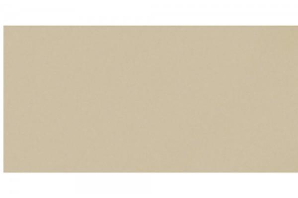 Керамогр.Моно CF 00 база мат MR 600*300 (1,08)